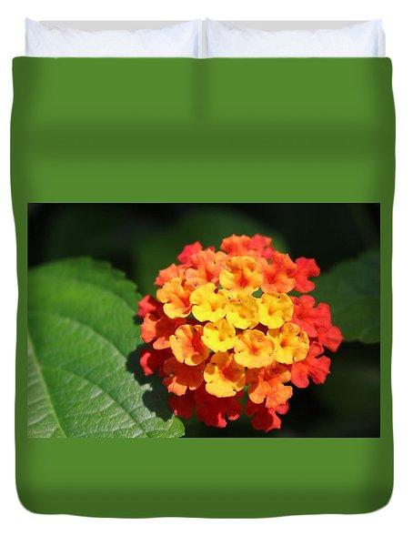 Orange Lantana Duvet Cover