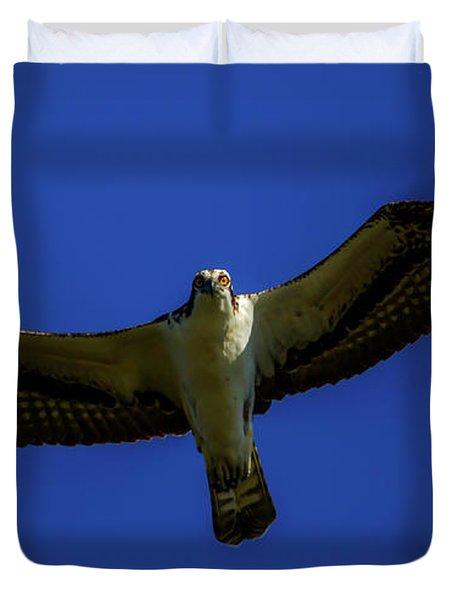 Osprey Glide In Blue Duvet Cover