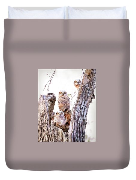 Owl Trio Standing Guard Duvet Cover