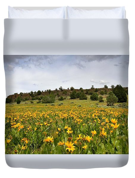 Owyhee Uplands Duvet Cover