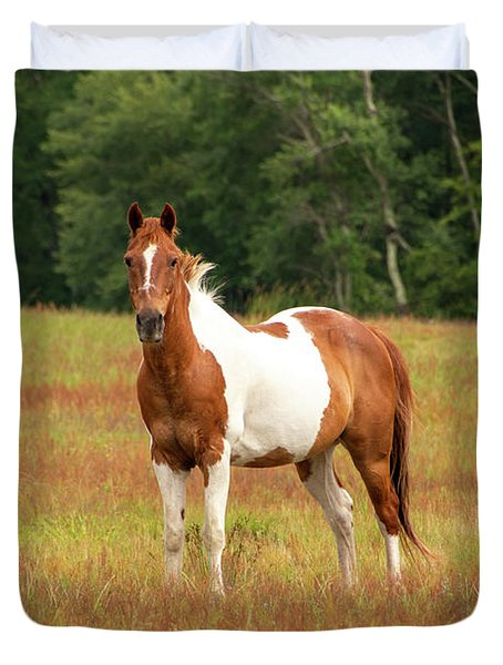 Paint Horse In Pasture Duvet Cover