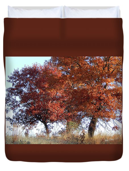 Passing Autumn Duvet Cover