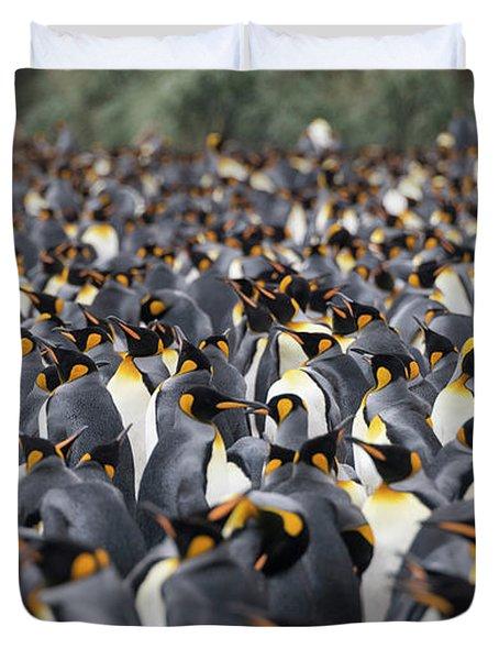 Penguinscape Duvet Cover
