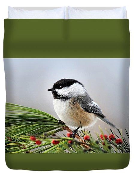 Pine Chickadee Duvet Cover