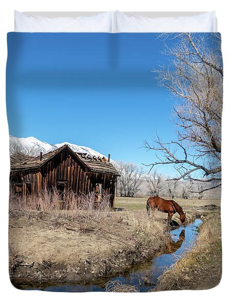Pine Creek Horse Drinking Duvet Cover