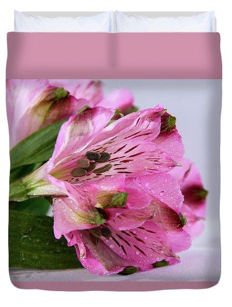 Pink Alstroemeria-4 Duvet Cover