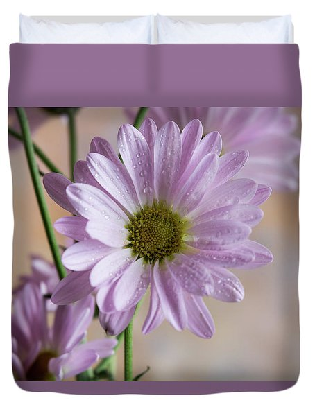 Pink Daisies-5 Duvet Cover
