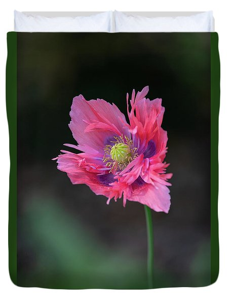 Duvet Cover featuring the photograph Pink Poppy by Dale Kincaid