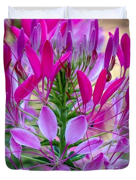 Pink Queen Flower Duvet Cover