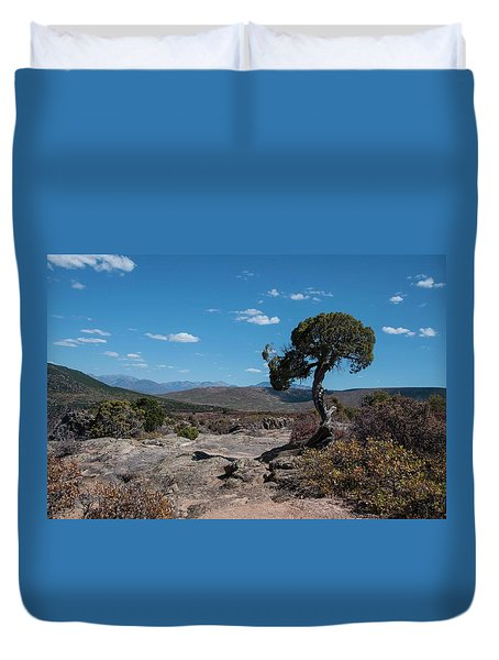 Pinyon Pine With North Rim In Background Black Canyon Of The Gunnison Duvet Cover