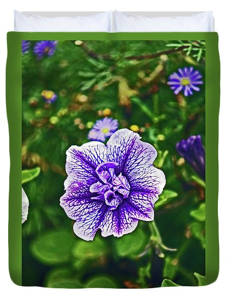 Pitlochry.  Purple Petunia. Duvet Cover
