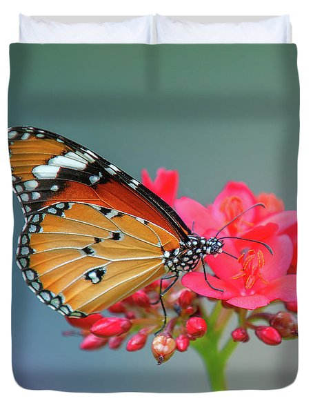 Plain Tiger Or African Monarch Butterfly Dthn0246 Duvet Cover