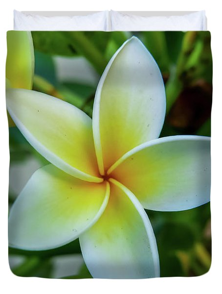 Plumeria In Bloom Duvet Cover
