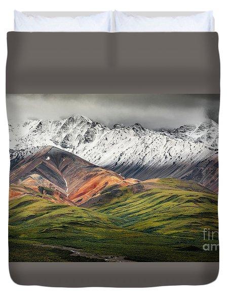 Polychrome Mountain, Denali Np, Alaska Duvet Cover