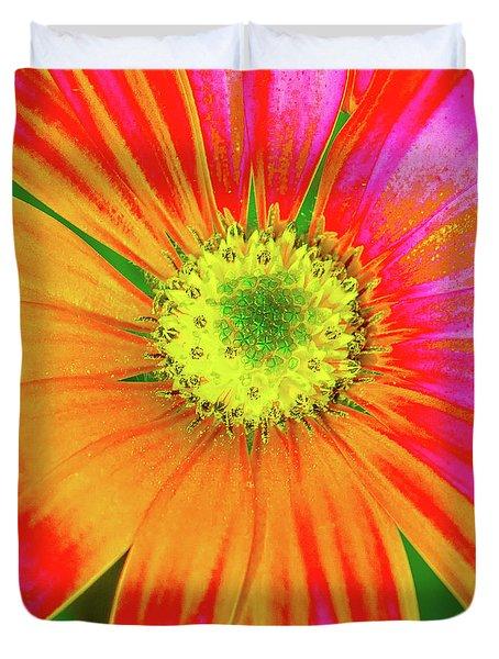 Pop Art Osteospermum 2 Duvet Cover