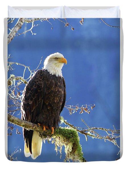 Portrait Of A Backlit Bald Eagle In Squamish Duvet Cover