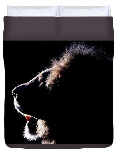 Portrait Of A Backlit Male African Lion Duvet Cover