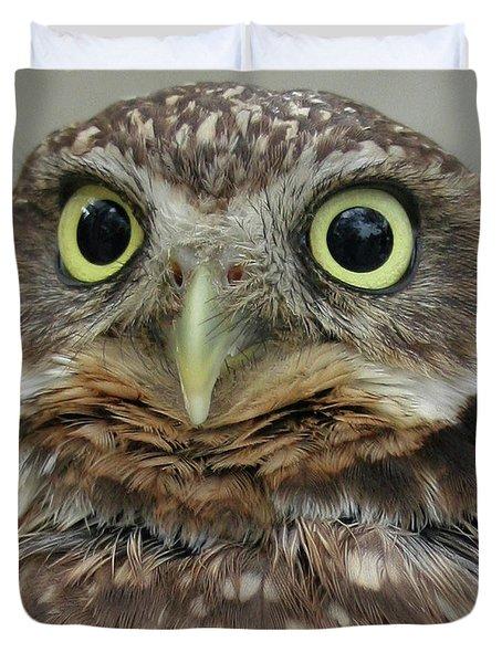 Portrait Of Burrowing Owl Duvet Cover