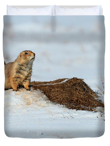 Prairie Dog In Snow Duvet Cover