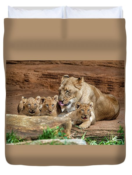 Pride Of The Pride 6114 Duvet Cover