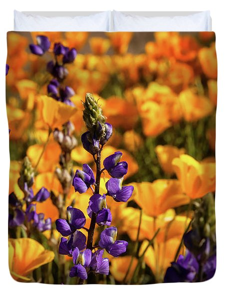 Purple And Gold Duvet Cover