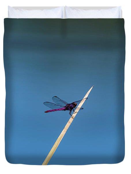 Purple Dragonfly Duvet Cover