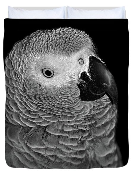 Quizzical African Grey Duvet Cover