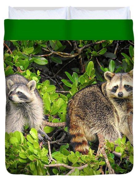 Raccoons In The Mangroves Duvet Cover