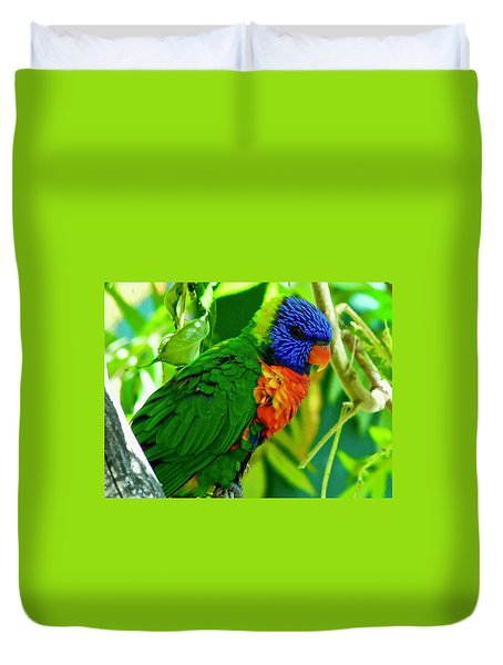 Duvet Cover featuring the photograph Rainbow Lorikeet by Dan Miller
