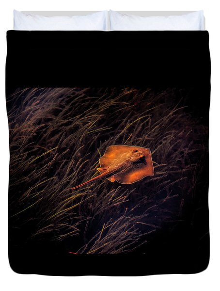 Ray In The Grass Flats Duvet Cover