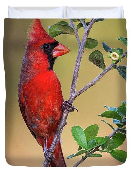 Red All Over Duvet Cover