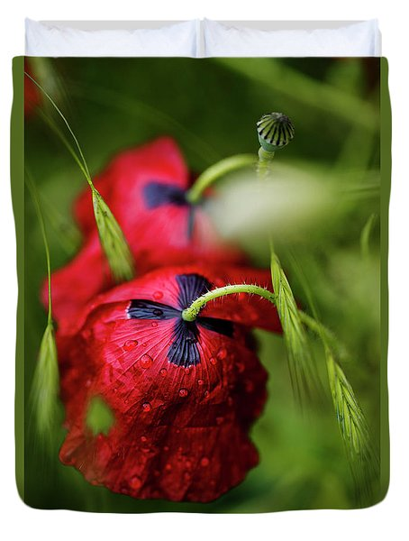 Red Corn Poppy Flowers With Dew Drops Duvet Cover