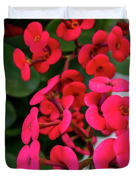 Red Flowers In Bloom Duvet Cover