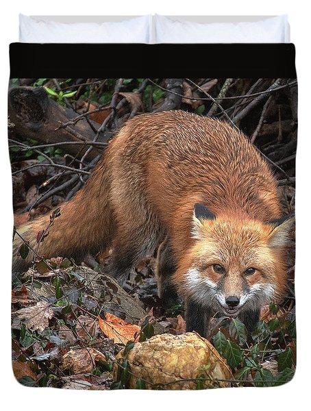 Duvet Cover featuring the photograph Red Fox Dmam0049 by Gerry Gantt
