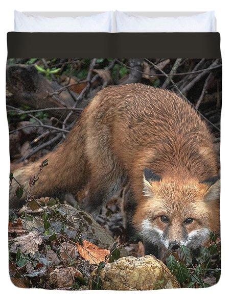 Duvet Cover featuring the photograph Red Fox Dmam0050 by Gerry Gantt