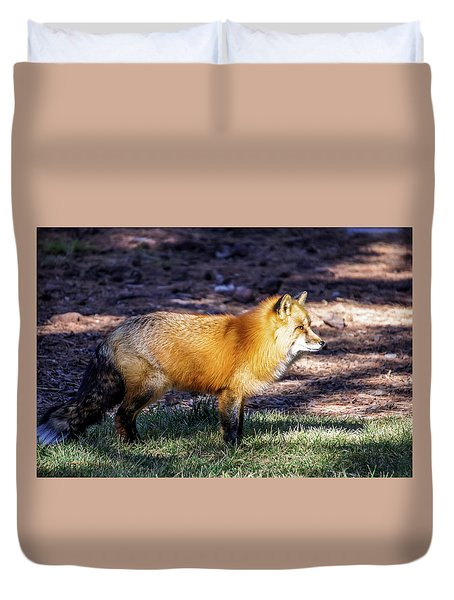 Duvet Cover featuring the photograph Red Fox In Morning Sun by Dawn Richards