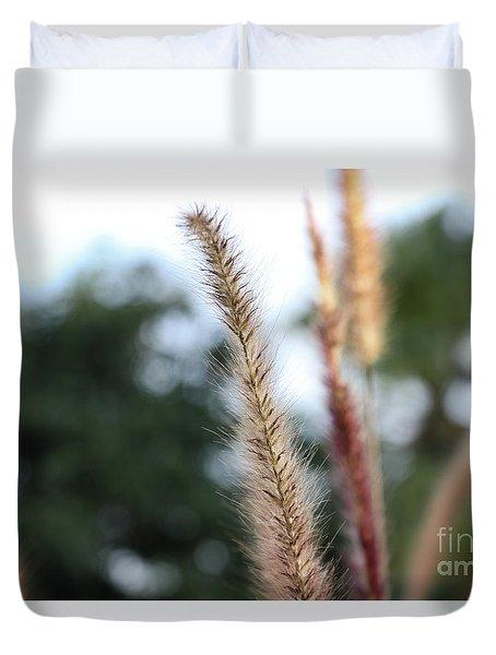 Red Grass - Pennisetum Setaceum 'rubrum' Duvet Cover