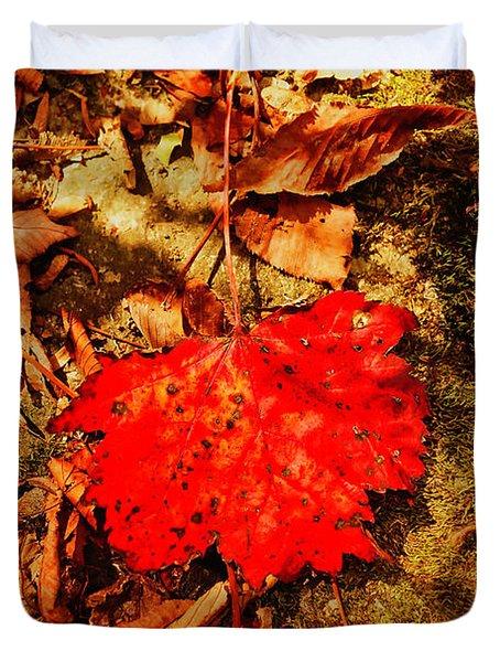 Red Leaf On Mossy Rock Duvet Cover