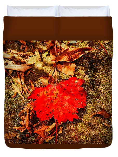 Red Leaf On Mossy Rock Duvet Cover