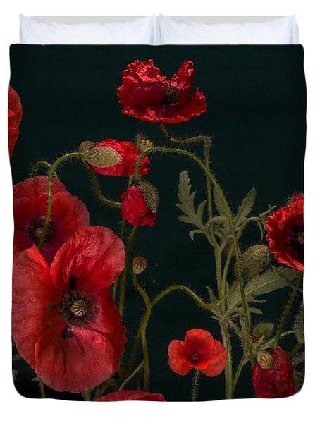 Red Poppies On Black Duvet Cover