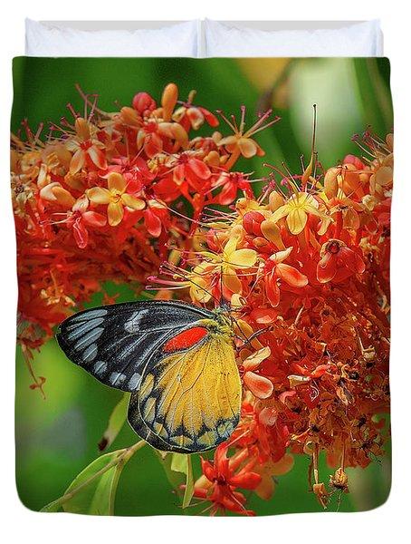 Duvet Cover featuring the photograph Red-spot Jezebel Butterfly Dthn0235 by Gerry Gantt