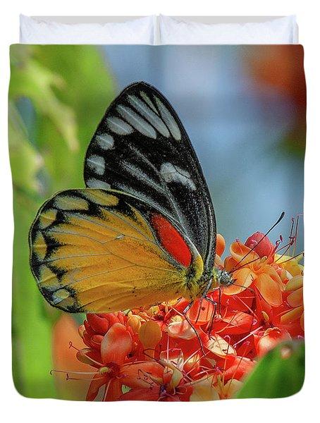 Duvet Cover featuring the photograph Red-spot Jezebel Butterfly Dthn0237 by Gerry Gantt
