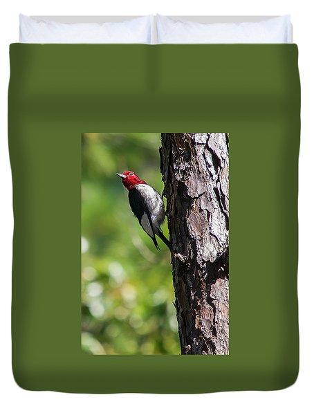 Redhead Woodpecker II Duvet Cover