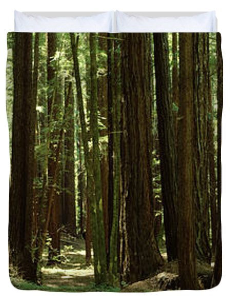 Redwood Trees Armstrong Redwoods St Duvet Cover