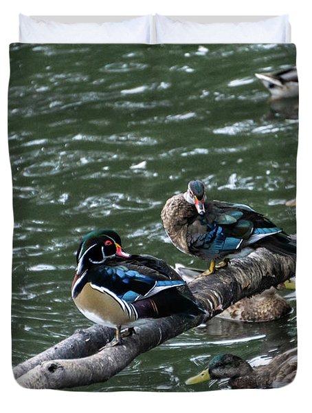 Resting Ducks Duvet Cover