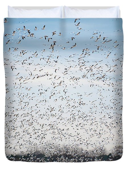 Resting On The Flyway Duvet Cover