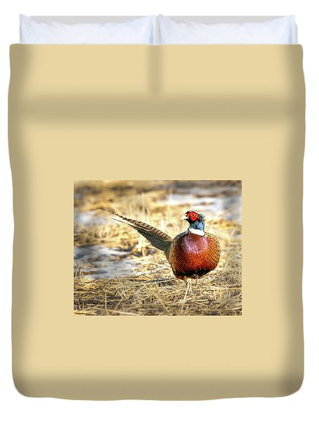 Ring-necked Pheasant Portrait Duvet Cover