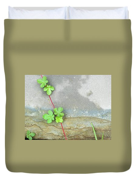 Rock Stain Abstract 4 Duvet Cover