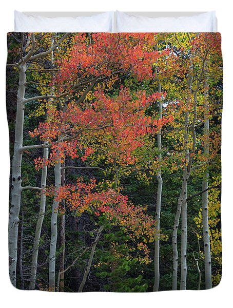 Rocky Mountain Forest Reds Duvet Cover