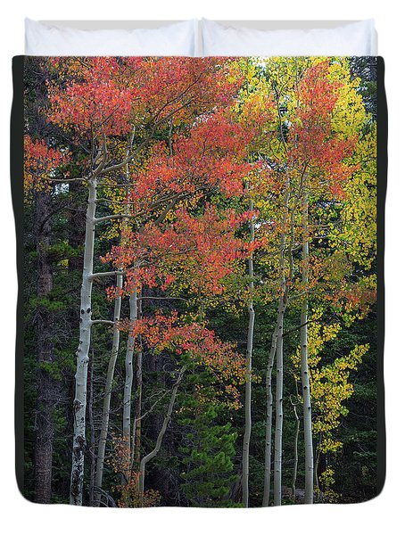 Duvet Cover featuring the photograph Rocky Mountain Forest Reds by James BO Insogna